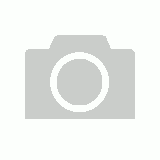 Bantex Insert Ring Binder Standard PP A4 4D Ring 25mm - White