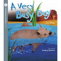 A Very Busy Day (Pack of 6 with Comprehension Coaching Card)