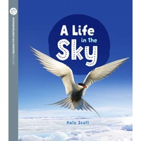 A Life in the Sky (Pack of 6 with Comprehension Coaching Card)