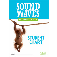 Sound Waves Student Chart (Original)