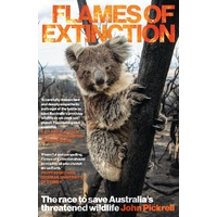 Flames of Extinction